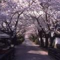 a_zyoukamachi08