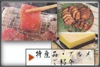 特産品・グルメのご紹介(日南)