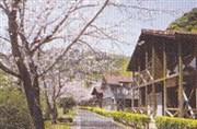 蜂之巣公園(北郷)